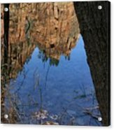 Zion Reflections Acrylic Print