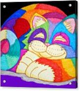 Zzzzzzzzzz Cat 3 Acrylic Print by Nick Gustafson