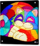 Zzzzzzzzzzzz Cat Acrylic Print