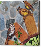 005 Song Sparrow And Cedar Waxwings Acrylic Print