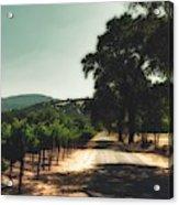 A Drive Through Napa Valley Acrylic Print