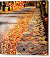 Autumn Avenue Acrylic Print