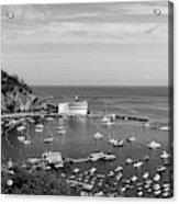 Avalon Harbor - Catalina Island, California Acrylic Print