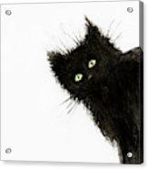 Black Fuzzy Cat Peaking From Around The Corner Acrylic Print