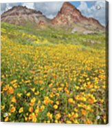 Boundary Cone Butte Acrylic Print