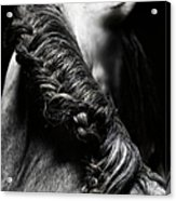 Braided Mane Of Grey Horse Acrylic Print