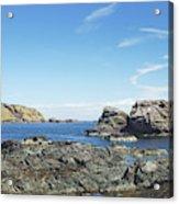 cliffs and coast at St. Abbs, Berwickshire Acrylic Print