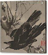 Crow On A Branch Acrylic Print