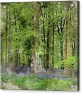 Digital Watercolor Painting Of Stunning Bluebell Forest Landscap Acrylic Print