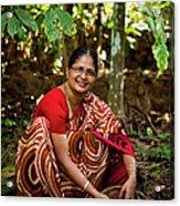 Female Coffee Farmer Harvesting Coffee Acrylic Print