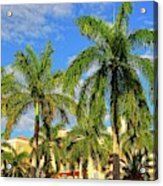Glorious Palms Acrylic Print
