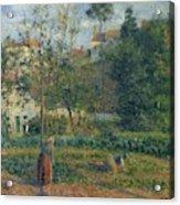 Kitchen Garden At The Hermitage, Pontoise, 1879 Acrylic Print