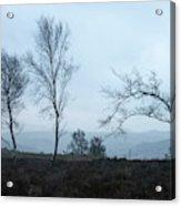 Moody Winter Landscape Image Of Skeletal Trees In Peak District  Acrylic Print