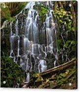Ramona Falls Acrylic Print