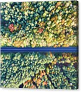 Road Through Colorful Autumn Forest Acrylic Print