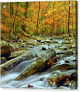 Seasons Acrylic Print
