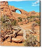 Skyline Arch, Arches National Park Acrylic Print