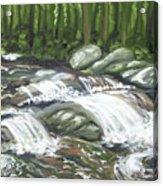 Asheville Mountain Stream Acrylic Print