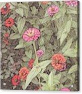 Thumbelina Acrylic Print