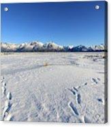 Turnagain Arm And Chugach Range From Hope Alaska Acrylic Print