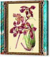 Vintage Orchid Antique Design Marble Caribbean-blue Acrylic Print