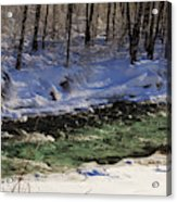 Winter Stream Near Hope On The Kenai Peninsula Alaska Acrylic Print