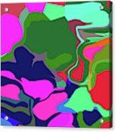 10-19-2008abcd Acrylic Print