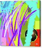 12-5-2011habcdefghijklmnopqrtu Acrylic Print