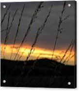 Photograph Of A Sunset Acrylic Print