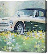 1967 Austin Healey 3000 Mk I I I B J 8 Acrylic Print