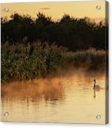 Beautiful Dawn Landscape Image Of River Thames At Lechlade-on-th Acrylic Print