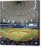 New York Yankees V Tampa Bay Rays Acrylic Print