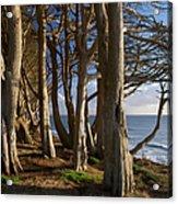 Rustic Davenport Coast Acrylic Print