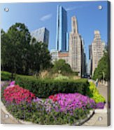 Summer Flowers In Bloom, Millennium Park, Chicago City Center, I Acrylic Print