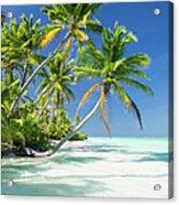 Tropical Beach Of An Atoll Lagoon And Acrylic Print