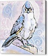 2018 Septembird 3 Acrylic Print