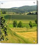 Photograph Of A Field In Germany Acrylic Print