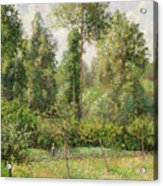 Poplars  Eragny  Acrylic Print