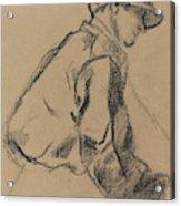 Study Of A Jockey Acrylic Print