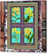 Antique Orchids Quatro On Rusted Metal And Weathered Wood Plank Acrylic Print