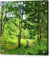 Green's Hill Acrylic Print