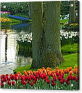 Spring Flowers In A Park Acrylic Print