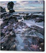 Motukiekie Beach - New Zealand Acrylic Print