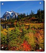 Autumn Colors With Mount Shuksan Acrylic Print