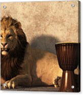 A Lion Among Drums Acrylic Print