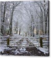 A Snowy Scene Acrylic Print
