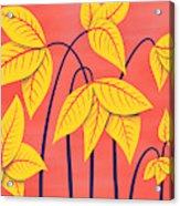 Abstract Flowers Geometric Art In Vibrant Coral And Yellow  Acrylic Print