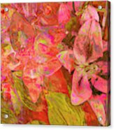 Abstract Pink Lilies Acrylic Print