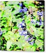 Abstract Summer Garden Acrylic Print