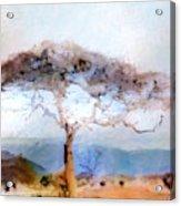 African Journey Acrylic Print